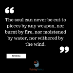 The soul can never be cut to pieces by any weapon, nor burnt by fire, nor moistened by water, nor withered by the wind.